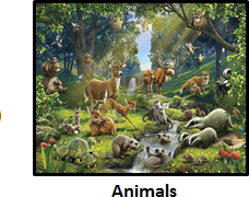 The image of the animals