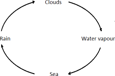 The image of correct water cycle – Choice B