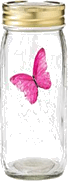 image of four different sizes of containers butterfly Choice D