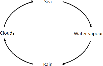 The image of correct water cycle – Choice C