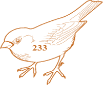 The bird is having only numbers in numerical figure – Choice B