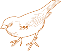 The bird is having only numbers in numerical figure – Choice C