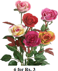 Image of roses flowers 6 for Rs. 3