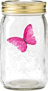 image of four different sizes of containers butterfly Choice C