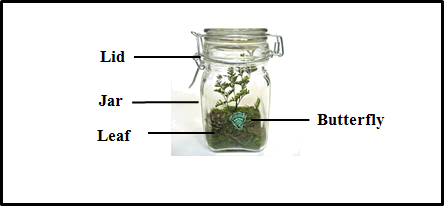 image of butterfly in glass jar