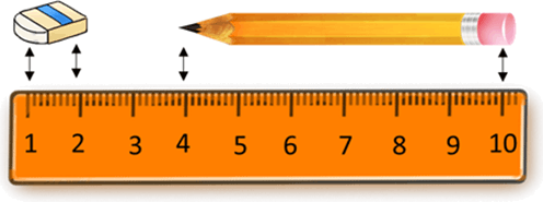 This image shows the ruler, pencil and eraser's length