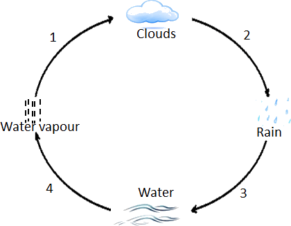 the diagram of the water cycle