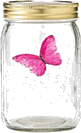 image of four different sizes of containers butterfly Choice B