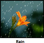 showing The image of rain