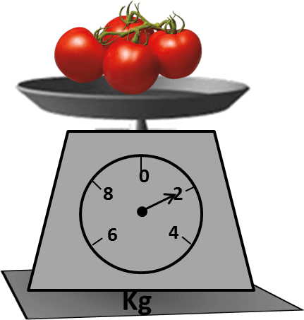 Image shows the scale has mass of 4 tomatoes