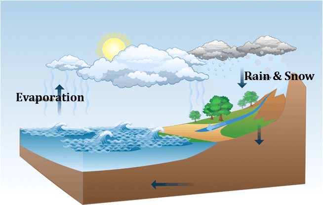 Water cycle shows the evaporation of water from seas and oceans