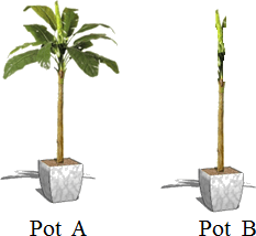 This diagram shows pot A and pot B