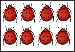 The image of 8 ladybugs