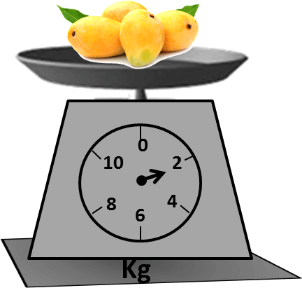 Scale shows 4 mangoes weigh