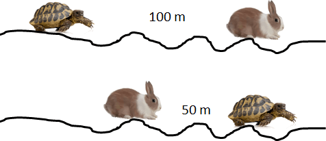 This figure is running race between rabbit and tortoise
