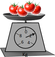 This figure represents the scale of 4 tomatoes weigh
