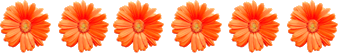 Image shows the number of flowers in orange colour – Choice B