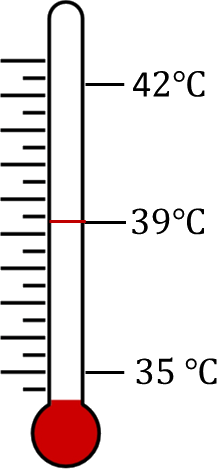 Thermometer reading while measuring human body temp. – Choice A