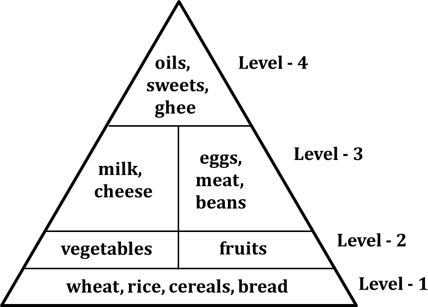 Figure shows the food pyramid