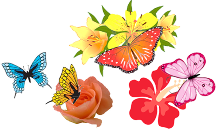 This figure shows the group of butterfly and flowers