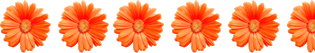 Image shows the number of flowers in orange colour – Choice D