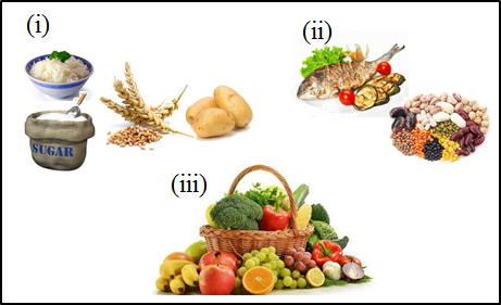 This image shows the sources of foods