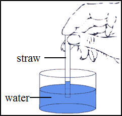 This image shows the placed a straw inside a beaker of water