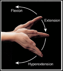 This diagram shows move our wrist