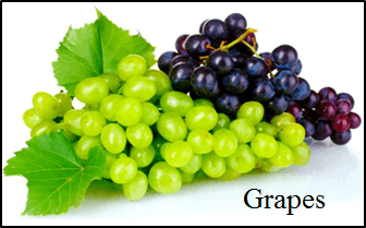 This image shows the grapes