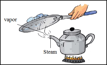 This diagram shows the steam and vapor