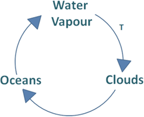 This diagram shows part of the water cycle