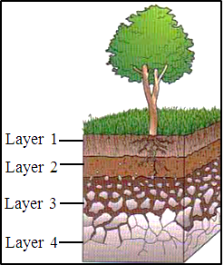 This diagram shows the layer of soil