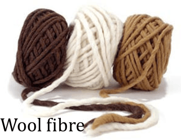 Image shows the fibre : Choice D