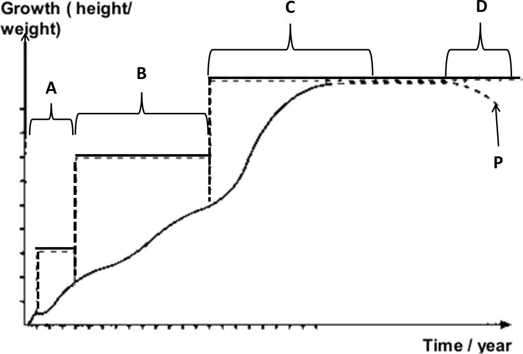 Image showing Human curve growth.