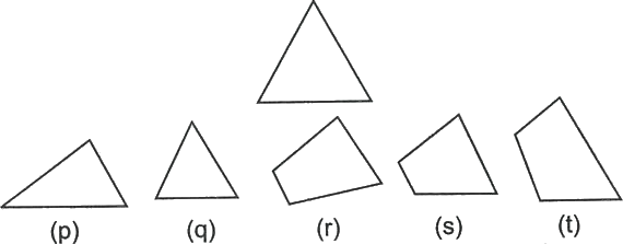 A triangle made by different shapes