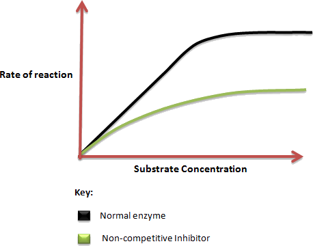 Image showing substrate concentration v/s Rate of reaction