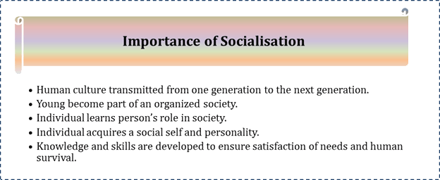 importance of primary socialization
