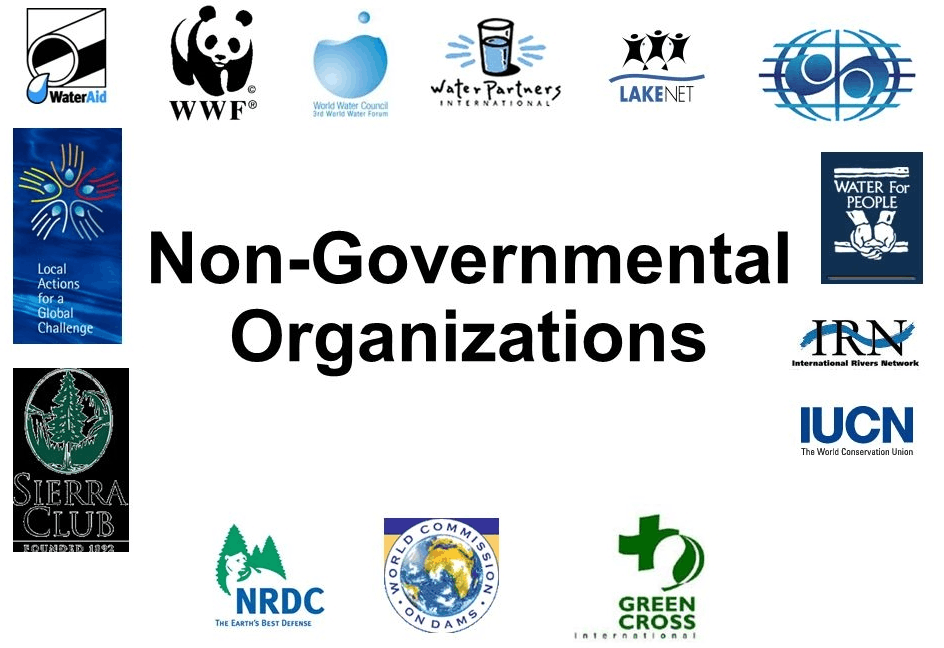 Image of Non-Govermental Organization