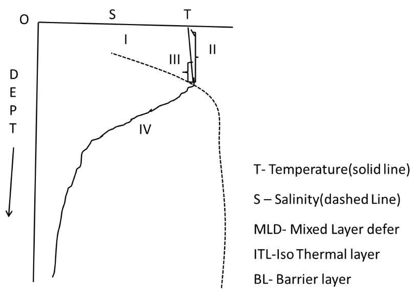 The vertical profiles of the temperature and the salinity are given in the diagram