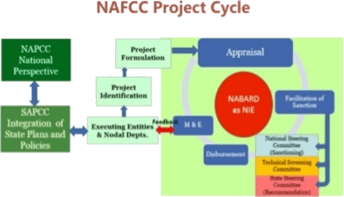 Image of NAFCC Project Cycle