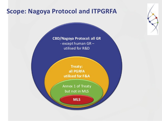 Image of Scope: Nagoya Protocol and ITPGRFA