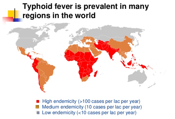 Map of prevalence of typhoid in india