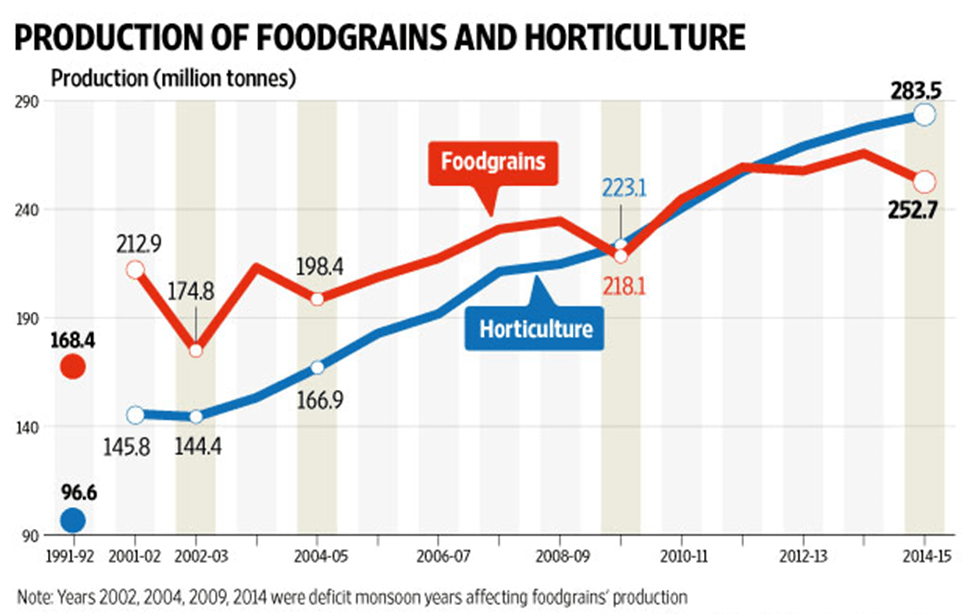Chart of Production of Food Grains And Horticulture