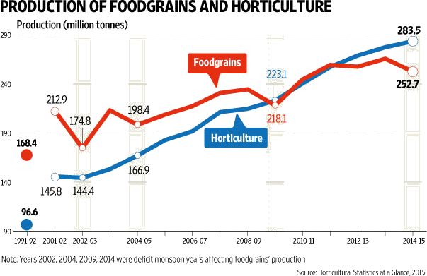 Image of Production of Foodgrains And Horticulture