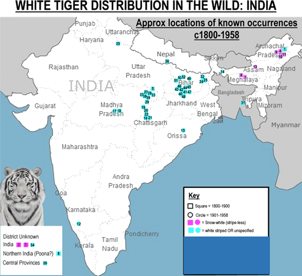 Location of White tiger Distribution in the Wild