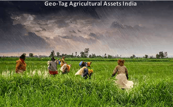 Geo-Tag Agricultural Assets