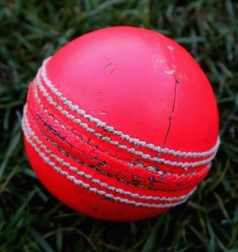 Image of Pink Ball
