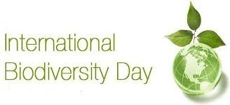 Image of the international Biodiversity Day