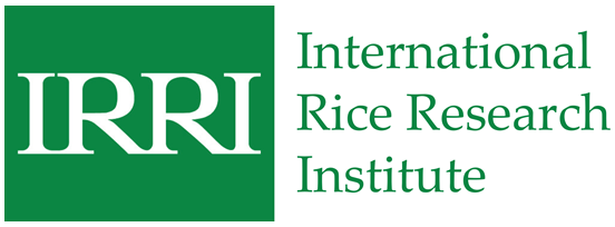 Image of International Rice Research Institute