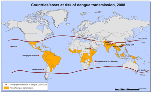 Contries at risk dengue transmission,2008